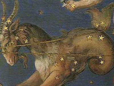 Какой камень подходит козерогу мужчине: по дате рождения и гороскопу